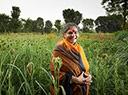 Vandana Shiva portraitiert auf der Versuchsfarm von Navdanya in einem Feld mit Fingerhirse (Ragi).